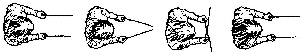 Dowsing using L Rods